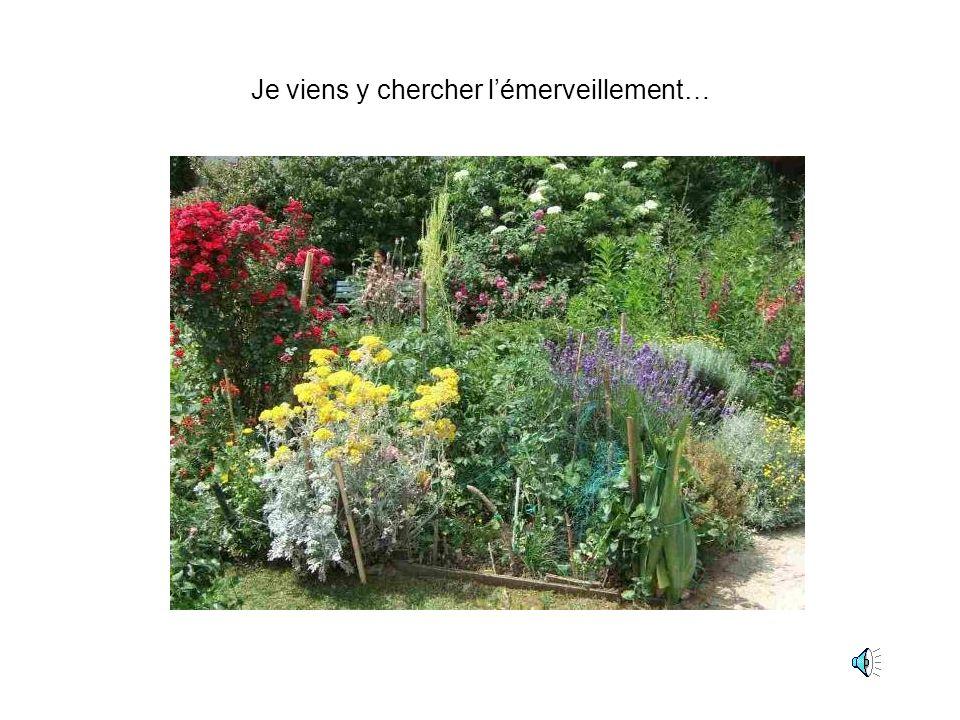 Le jardin est une coupure avec la ville. Une petite impression dêtre en vacances, dêtre ailleurs… Caroline