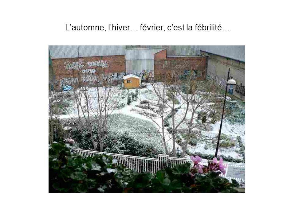 Lautomne, lhiver… février, cest la fébrilité…
