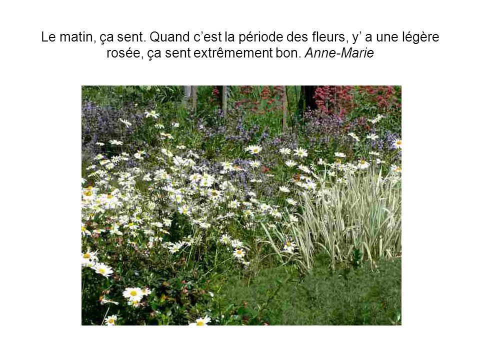 Quand on jardine, on est à ce quon fait… Travailler dans le jardin, cest une détente. Une vraie détente. Ca fait des ampoules… mais cest bien. Gérard