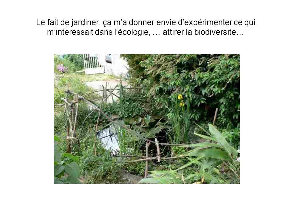 Le fait de jardiner, ça ma donner envie dexpérimenter ce qui mintéressait dans lécologie, … attirer la biodiversité…