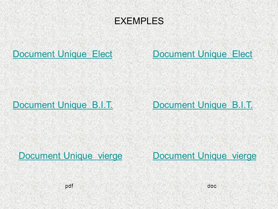 EXEMPLES Document Unique Elect Document Unique B.I.T. Document Unique vierge Document Unique B.I.T. Document Unique Elect pdfdoc