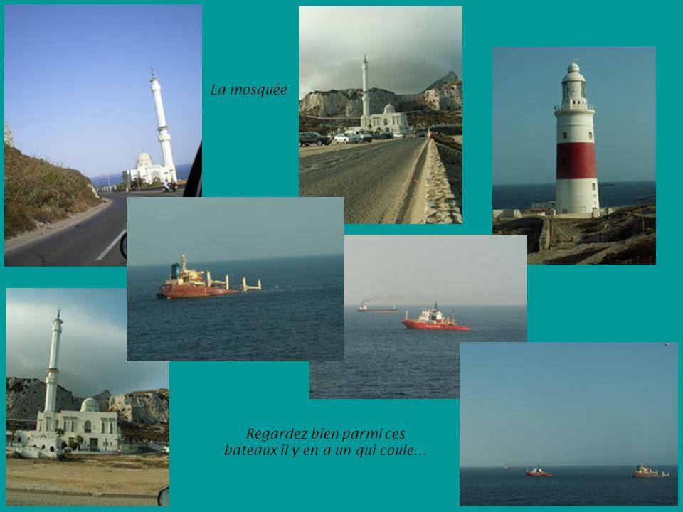 La mosquée Regardez bien parmi ces bateaux il y en a un qui coule…