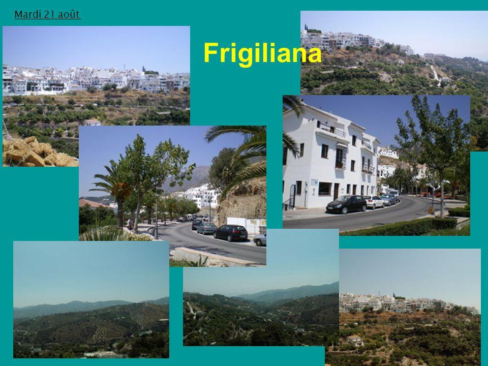 Mardi 21 août Frigiliana