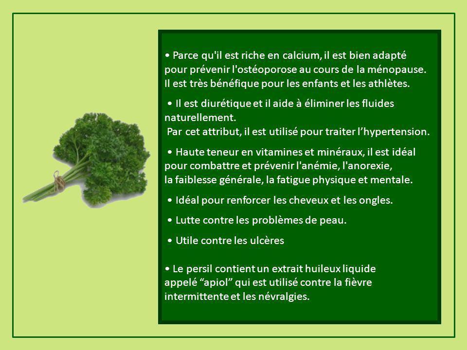 Le persil est un puissant antioxydant, il favorise le rajeunissement de la peau. Contient du bêta-carotène. Riche en minéraux comme le calcium, le pho