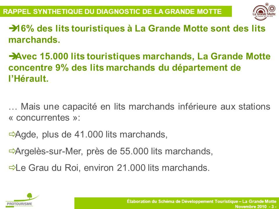 4 Élaboration du Schéma de Développement Touristique – La Grande Motte Novembre 2010 - 4 - La Grande Motte se distingue par une prédominance des lits en meublés touristiques (38%) Répartition des lits touristiques marchands à La Grande Motte RAPPEL SYNTHETIQUE DU DIAGNOSTIC DE LA GRANDE MOTTE Seulement 19% de lits en HPA (2% des lits en HPA de lHérault).