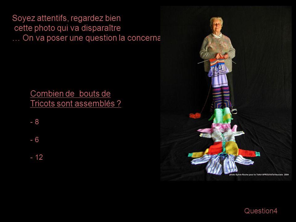 Question4 Soyez attentifs, regardez bien cette photo qui va disparaître … On va poser une question la concernant… Combien de bouts de Tricots sont assemblés .