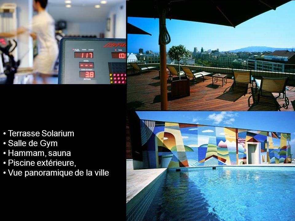 Terrasse Solarium Salle de Gym Hammam, sauna Piscine extérieure, Vue panoramique de la ville