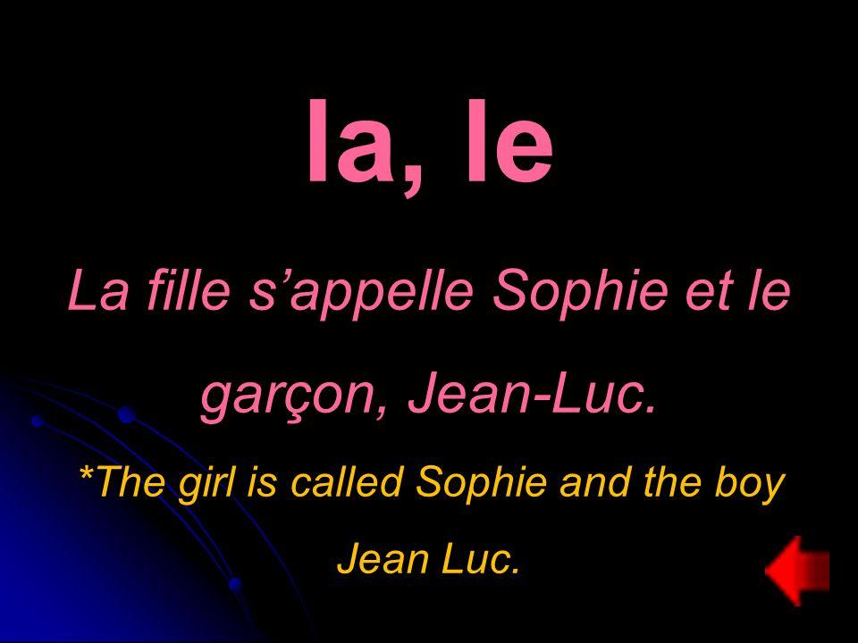 la, le La fille sappelle Sophie et le garçon, Jean-Luc.
