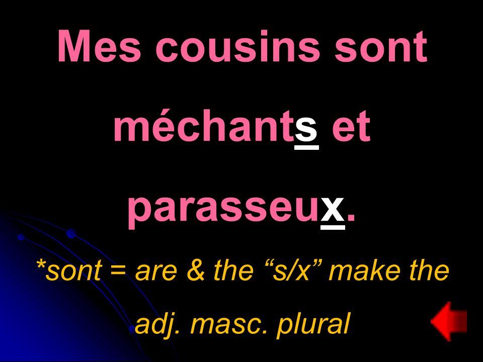 Mes cousins sont méchants et parasseux. *sont = are & the s/x make the adj. masc. plural