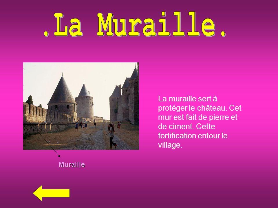 Muraille La muraille sert à protéger le château.Cet mur est fait de pierre et de ciment.
