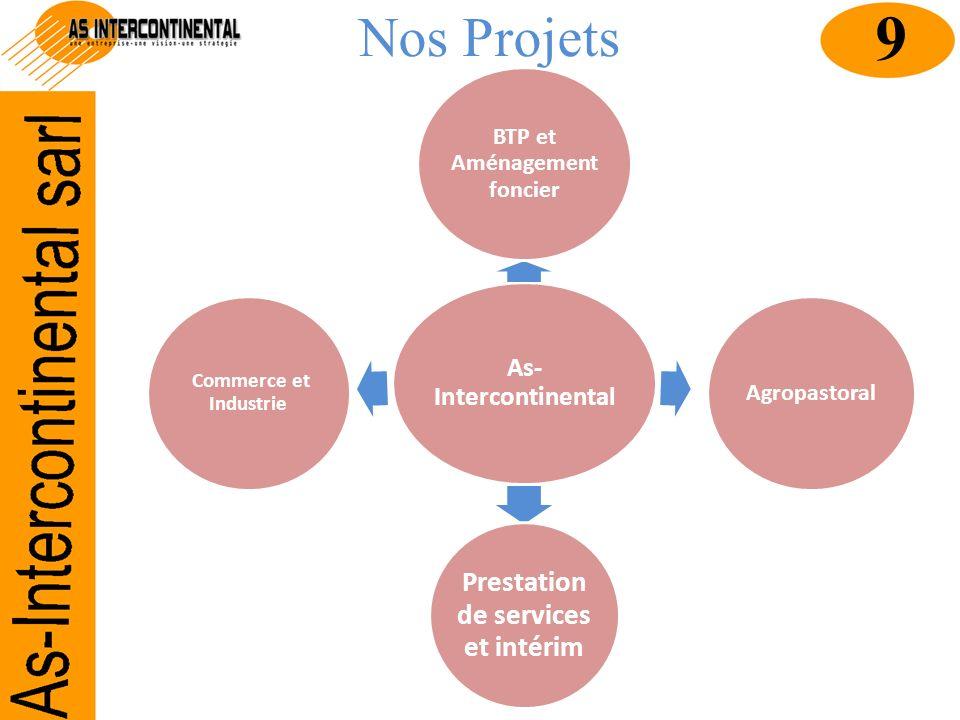 Nos Projets As- Intercontinental BTP et Aménagement foncier Agropastoral Prestation de services et intérim Commerce et Industrie 9