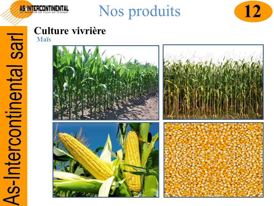 Nos produits Culture vivrière Maïs 12