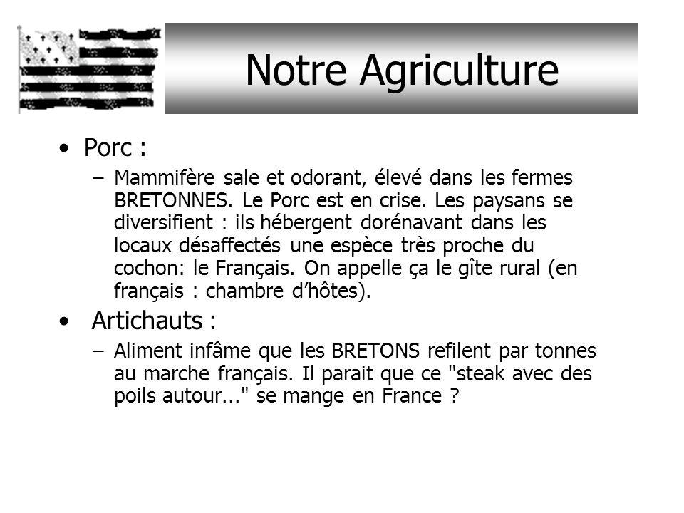 Notre Agriculture Porc : –Mammifère sale et odorant, élevé dans les fermes BRETONNES.
