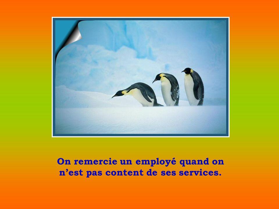 On remercie un employé quand on nest pas content de ses services.