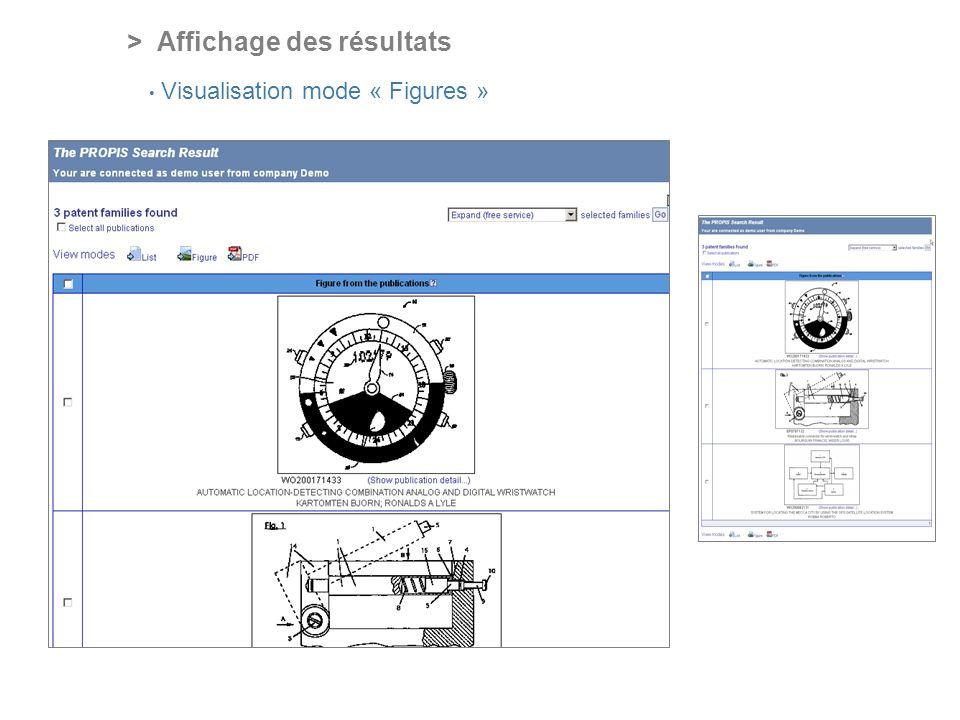 PROFESSIONAL ONLINE PATENT INFORMATION SERVICE > Affichage des résultats Visualisation mode « Figures »