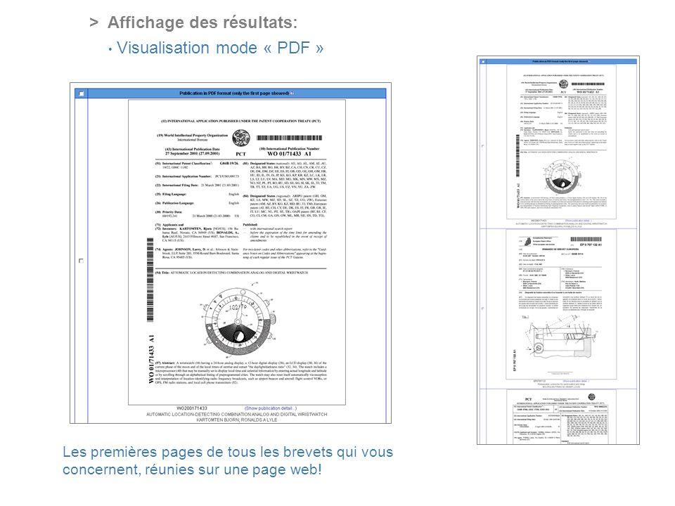 PROFESSIONAL ONLINE PATENT INFORMATION SERVICE > Affichage des résultats: Visualisation mode « PDF » Les premières pages de tous les brevets qui vous