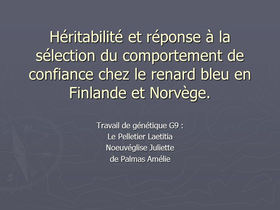 Héritabilité et réponse à la sélection du comportement de confiance chez le renard bleu en Finlande et Norvège. Travail de génétique G9 : Le Pelletier
