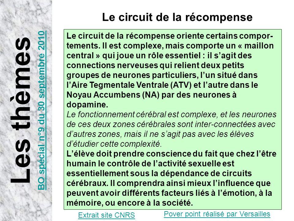 Extrait site CNRS Le circuit de la récompense oriente certains compor- tements. Il est complexe, mais comporte un « maillon central » qui joue un rôle