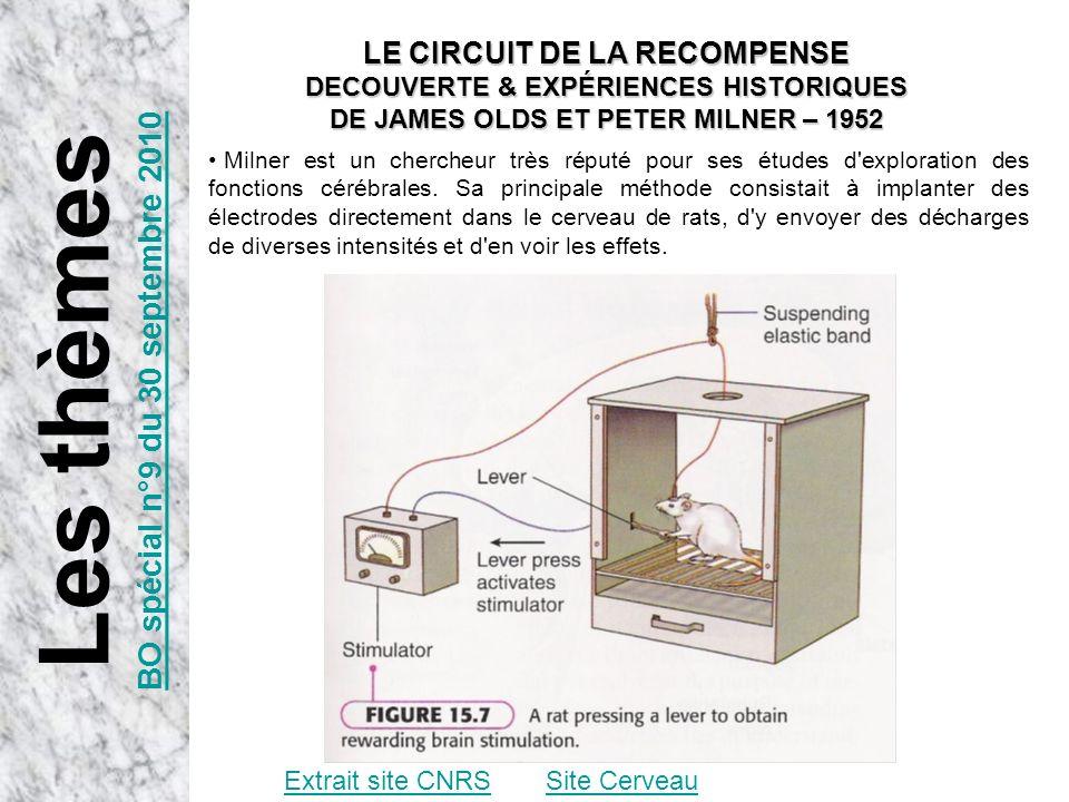 Extrait site CNRSSite Cerveau LE CIRCUIT DE LA RECOMPENSE DECOUVERTE & EXPÉRIENCES HISTORIQUES DE JAMES OLDS ET PETER MILNER – 1952 Milner est un cher