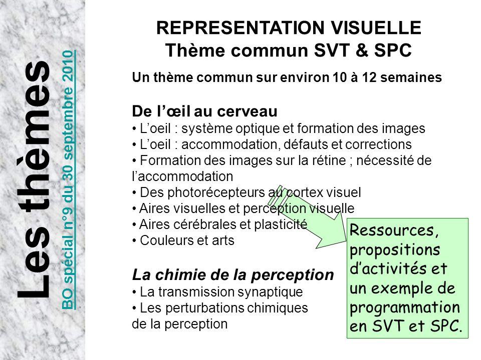 Un thème commun sur environ 10 à 12 semaines De lœil au cerveau Loeil : système optique et formation des images Loeil : accommodation, défauts et corr