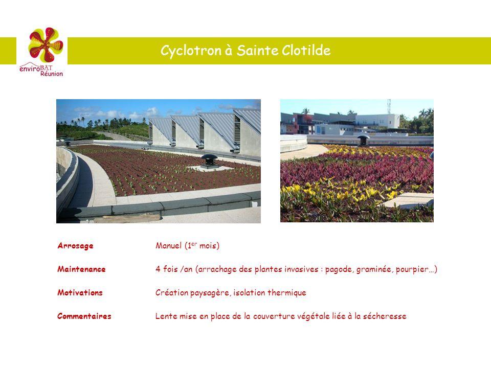 Cyclotron à Sainte Clotilde ArrosageManuel (1 er mois) Maintenance4 fois /an (arrachage des plantes invasives : pagode, graminée, pourpier…) Motivatio