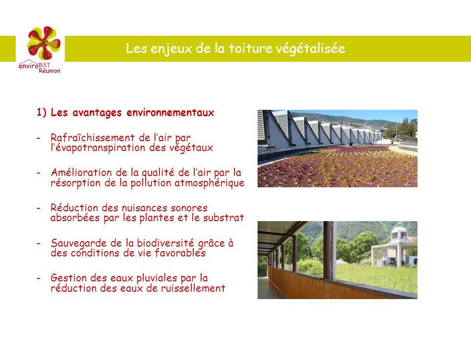 1) Les avantages environnementaux -Rafraîchissement de lair par lévapotranspiration des végétaux -Amélioration de la qualité de lair par la résorption