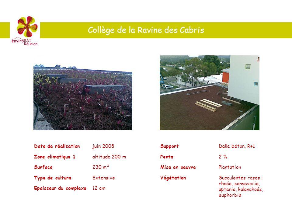 Collège de la Ravine des Cabris Date de réalisationjuin 2008 Zone climatique 1altitude 200 m Surface230 m² Type de cultureExtensive Epaisseur du compl