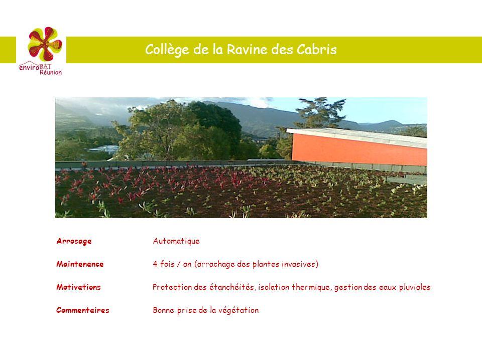 Collège de la Ravine des Cabris ArrosageAutomatique Maintenance4 fois / an (arrachage des plantes invasives) MotivationsProtection des étanchéités, is