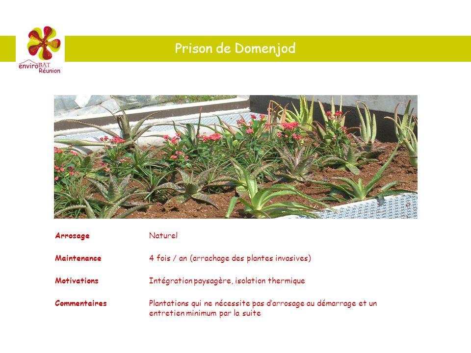 Prison de Domenjod ArrosageNaturel Maintenance4 fois / an (arrachage des plantes invasives) MotivationsIntégration paysagère, isolation thermique Comm