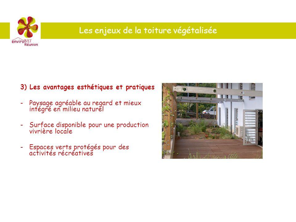 Les enjeux de la toiture végétalisée 3) Les avantages esthétiques et pratiques -Paysage agréable au regard et mieux intégré en milieu naturel - Surfac