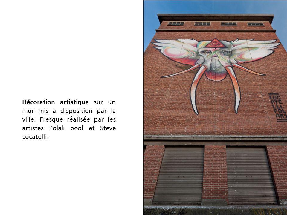 Décoration artistique sur un mur mis à disposition par la ville. Fresque réalisée par les artistes Polak pool et Steve Locatelli.