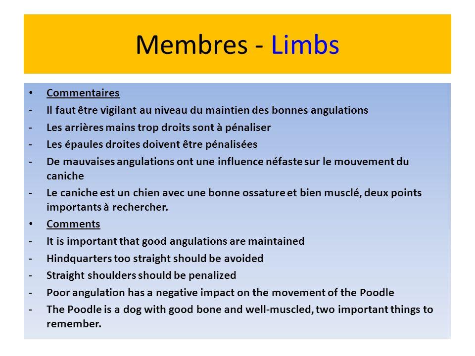 Membres - Limbs Commentaires -Il faut être vigilant au niveau du maintien des bonnes angulations -Les arrières mains trop droits sont à pénaliser -Les