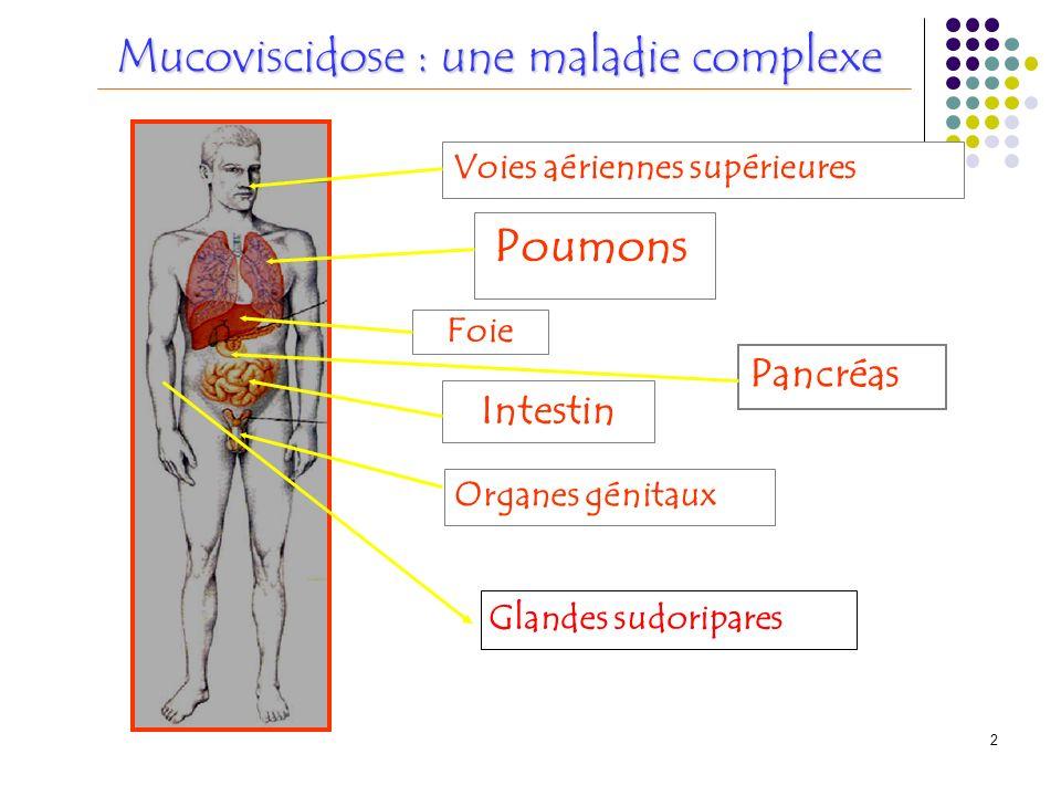 2 Voies aériennes supérieures Poumons Foie Pancréas Intestin Organes génitaux Mucoviscidose : une maladie complexe Glandes sudoripares