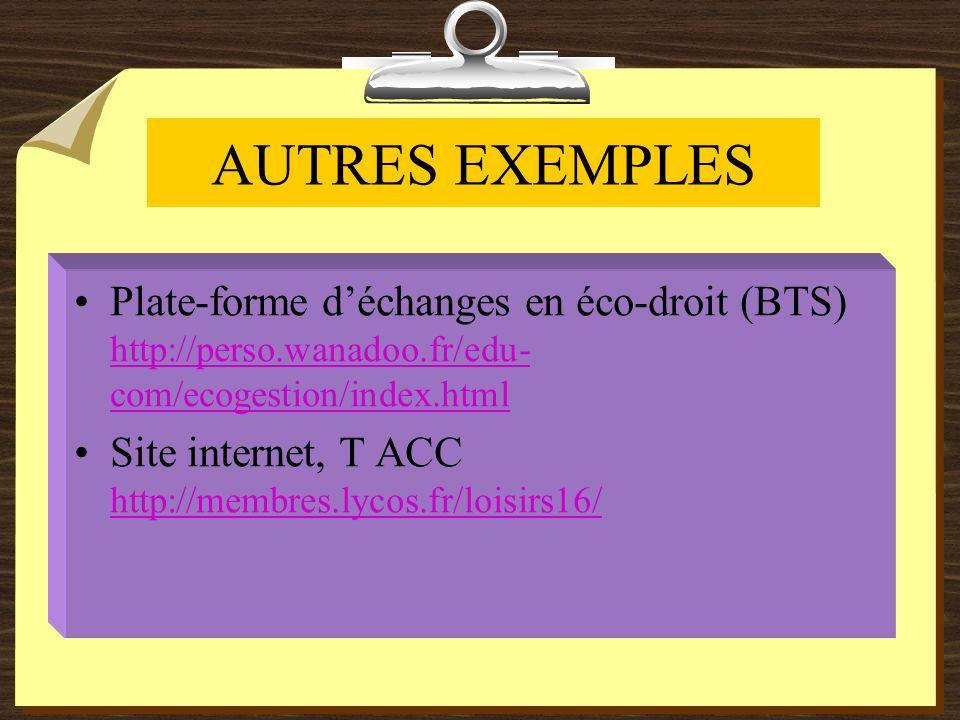 AUTRES EXEMPLES Plate-forme déchanges en éco-droit (BTS) http://perso.wanadoo.fr/edu- com/ecogestion/index.html http://perso.wanadoo.fr/edu- com/ecogestion/index.html Site internet, T ACC http://membres.lycos.fr/loisirs16/ http://membres.lycos.fr/loisirs16/