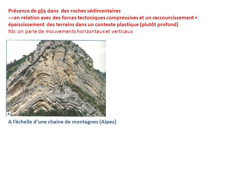 Présence de plis dans des roches sédimentaires en relation avec des forces tectoniques compressives et un raccourcissement + épaississement des terrai