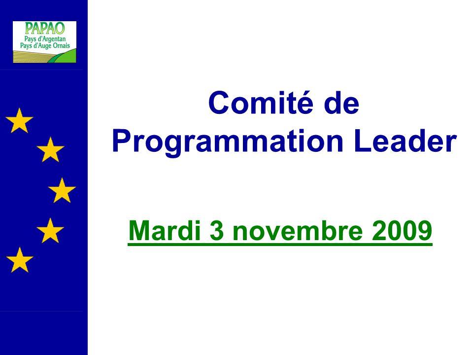 Comité de Programmation Leader Mardi 3 novembre 2009