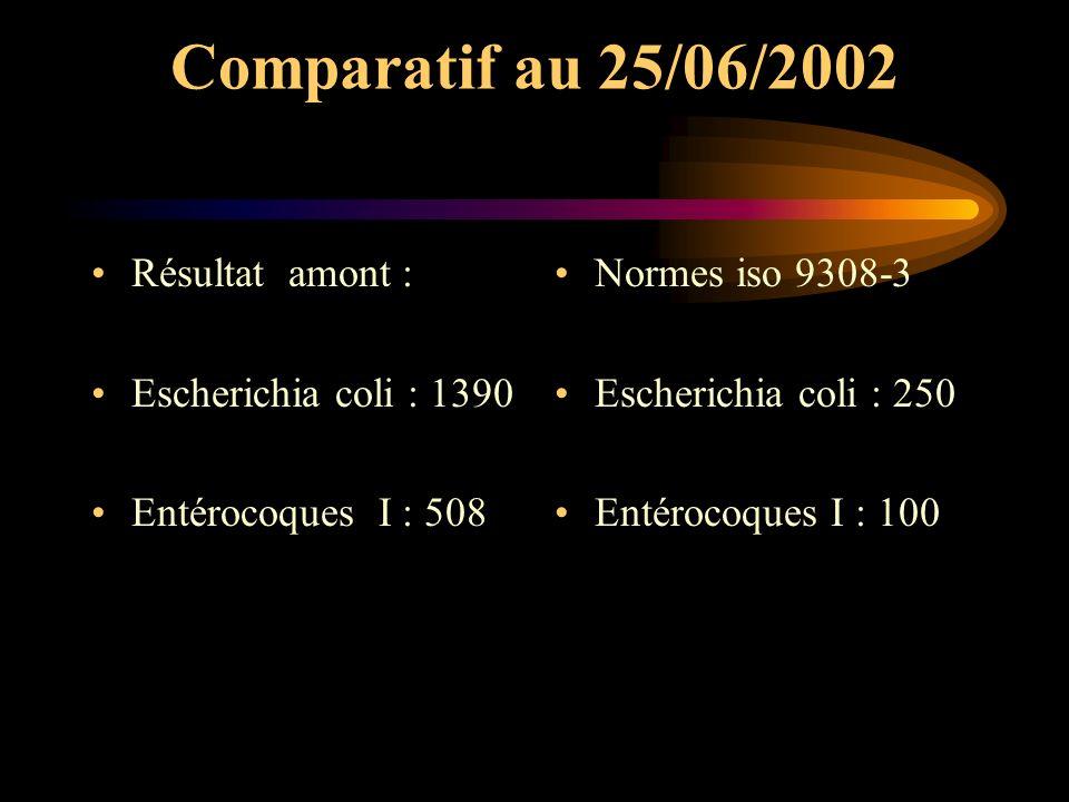 Comparatif au 25/06/2002 Résultat amont : Escherichia coli : 1390 Entérocoques I : 508 Normes iso 9308-3 Escherichia coli : 250 Entérocoques I : 100