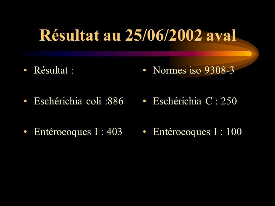 Résultat au 25/06/2002 aval Résultat : Eschérichia coli :886 Entérocoques I : 403 Normes iso 9308-3 Eschérichia C : 250 Entérocoques I : 100