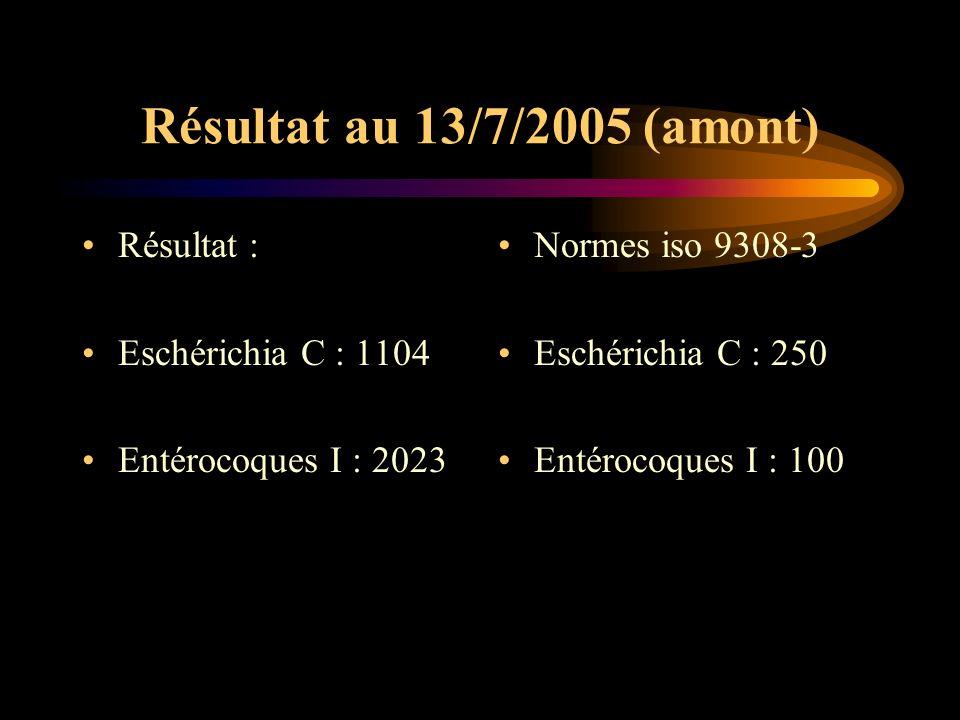 Résultat au 13/7/2005 (amont) Résultat : Eschérichia C : 1104 Entérocoques I : 2023 Normes iso 9308-3 Eschérichia C : 250 Entérocoques I : 100