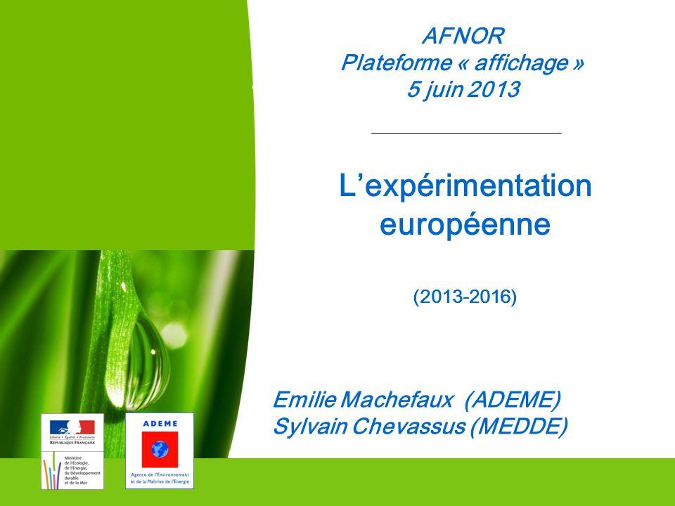 08/05/10 1 AFNOR Plateforme « affichage » 5 juin 2013 Commissariat Général au Développement durable Emilie Machefaux (ADEME) Sylvain Chevassus (MEDDE)