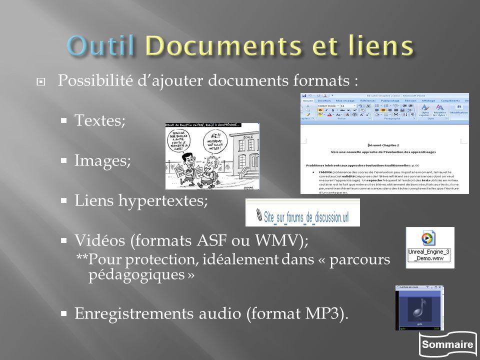 Sommaire Possibilité dajouter documents formats : Textes; Images; Liens hypertextes; Vidéos (formats ASF ou WMV); **Pour protection, idéalement dans «