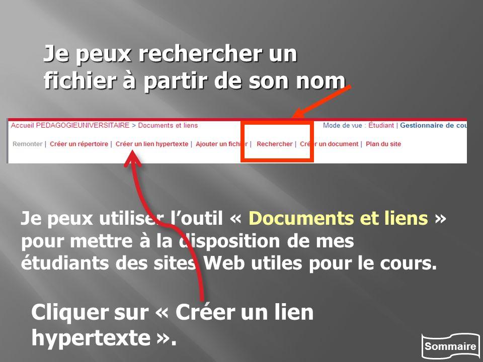 Sommaire Je peux rechercher un fichier à partir de son nom. Je peux utiliser loutil « Documents et liens » pour mettre à la disposition de mes étudian