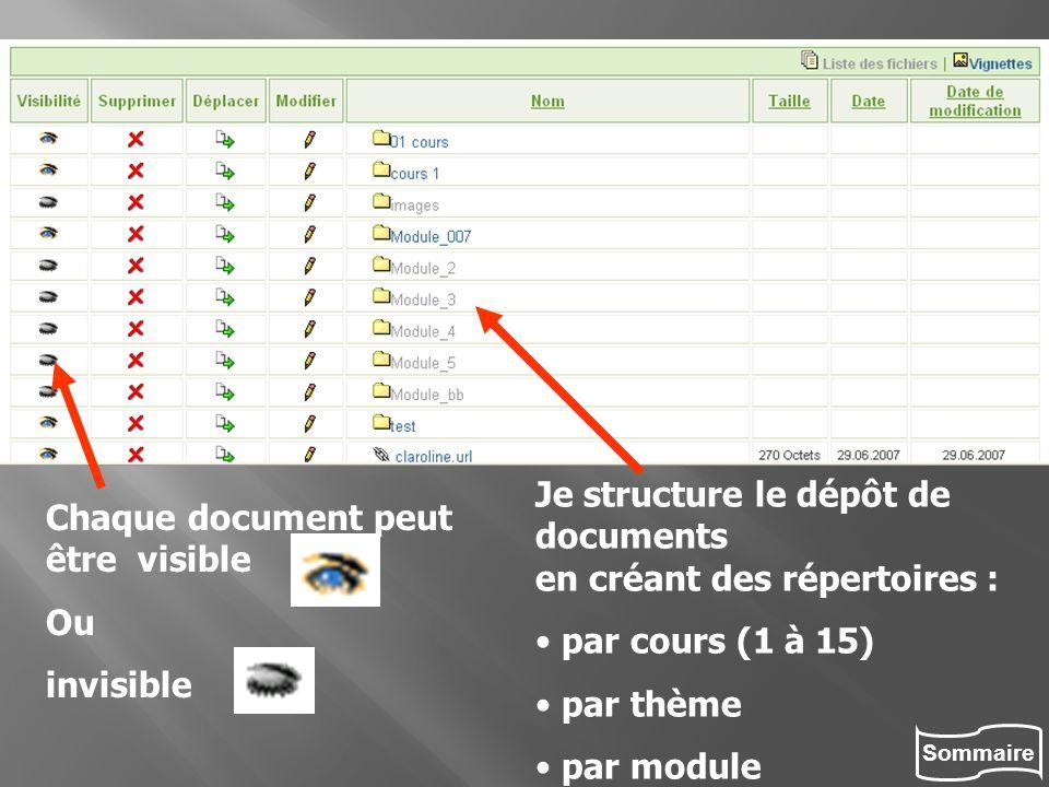 Sommaire Je structure le dépôt de documents en créant des répertoires : par cours (1 à 15) par thème par module Chaque document peut être visible Ou i