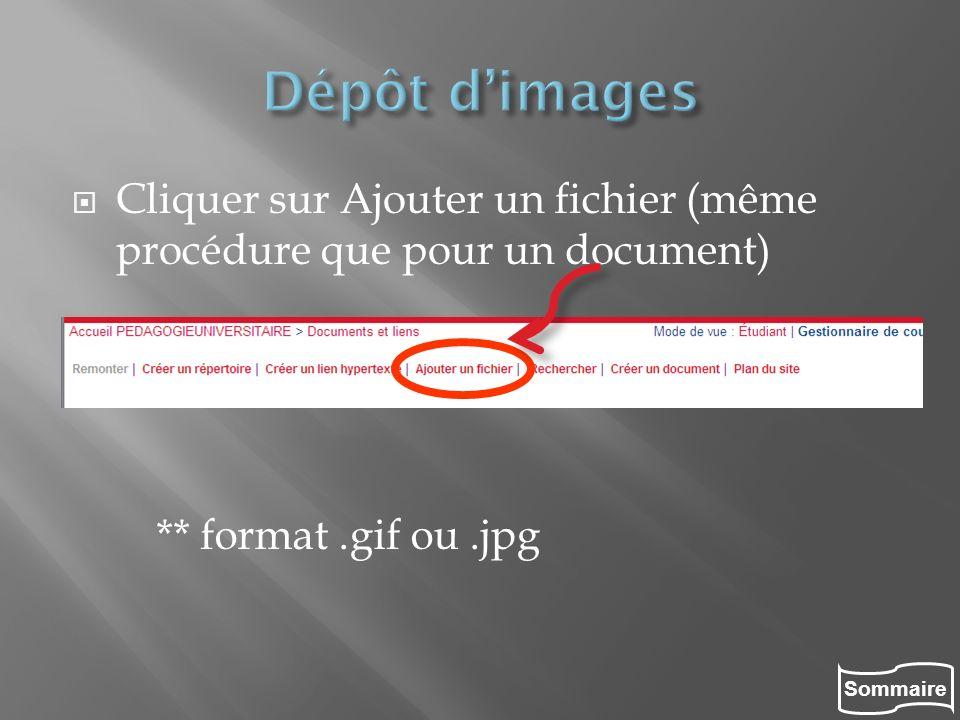 Sommaire Cliquer sur Ajouter un fichier (même procédure que pour un document) ** format.gif ou.jpg