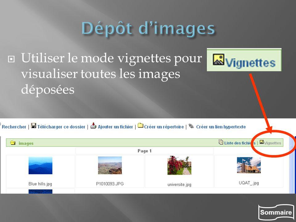 Sommaire Utiliser le mode vignettes pour visualiser toutes les images déposées