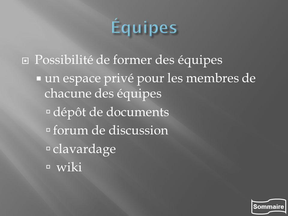 Sommaire Possibilité de former des équipes un espace privé pour les membres de chacune des équipes dépôt de documents forum de discussion clavardage w