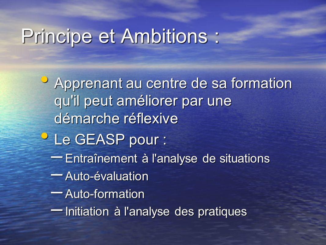 Principe et Ambitions : Apprenant au centre de sa formation qu'il peut améliorer par une démarche réflexive Apprenant au centre de sa formation qu'il