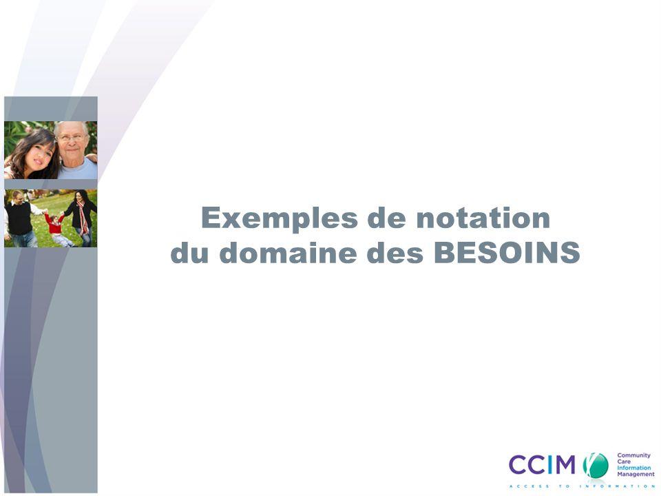 Exemples de notation du domaine des BESOINS