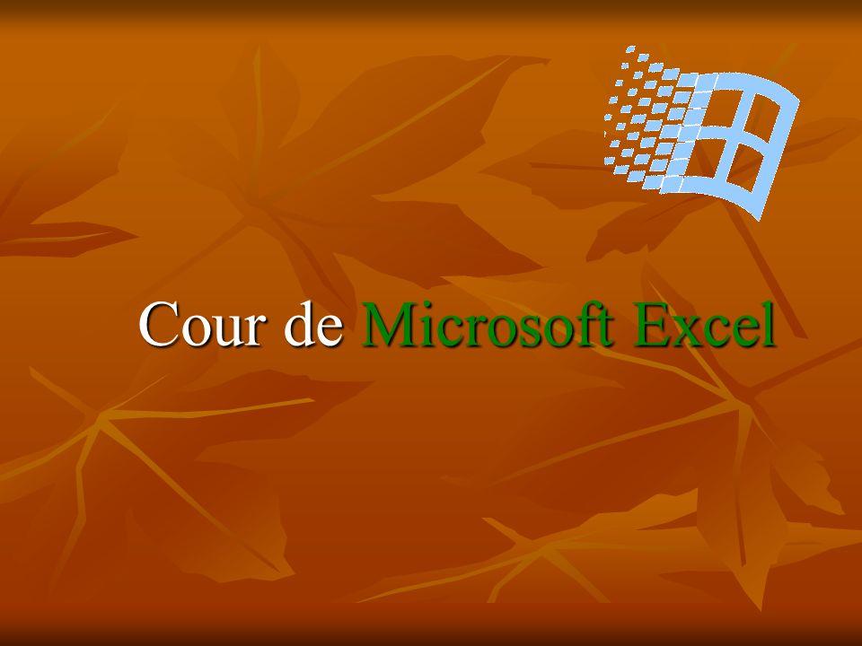 Cour de Microsoft Excel