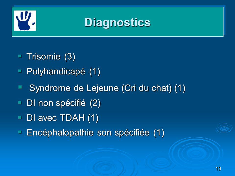 13 Trisomie (3) Trisomie (3) Polyhandicapé (1) Polyhandicapé (1) Syndrome de Lejeune (Cri du chat) (1) Syndrome de Lejeune (Cri du chat) (1) DI non sp
